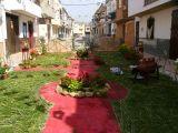 1-Cruz_de_mayo_2008_en_Mengibar_(33)