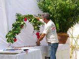 1-Cruz_de_mayo_2008_en_Mengibar_(47)