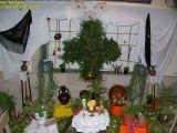 1-Cruz de Mayo 2008 en Mengibar (52)