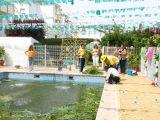 1-Cruz_de_mayo_2008_en_Mengibar_(62)