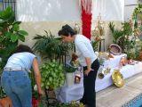 1-Cruz_de_mayo_2008_en_Mengibar_(63)