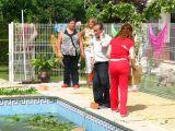 1-Cruz_de_mayo_2008_en_Mengibar_(65)
