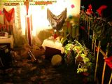 1-Cruz de Mayo 2008 en Mengibar (80)