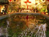 1-Cruz de Mayo 2008 en Mengibar (87)