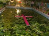 1-Cruz de Mayo 2008 en Mengibar (92)