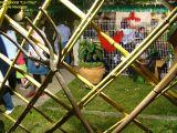 1-Cruz de Mayo 2008 en Mengibar (97)