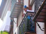 1-Romería Malena 2008 (103)