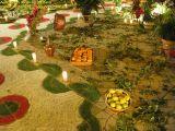 2-Cruz de Mayo 2008 en Mengibar (15)