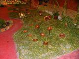 2-Cruz de Mayo 2008 en Mengibar (44)