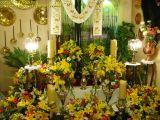 2-Cruz de Mayo 2008 en Mengibar (90)