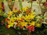 2-Cruz de Mayo 2008 en Mengibar (98)