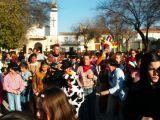 Carnaval 2005. Pasacalles y pasarela 28