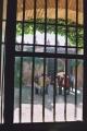 Casa Palacio. Jornada de puertas abiertas. Fotos de Emilio Plaza 21