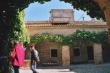 Casa Palacio. Jornada de puertas abiertas. Fotos de Emilio Plaza 25