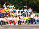 Competiciones deportivas entre colegios mengibareños 7