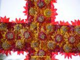 Cruces de Mayo 2006 23