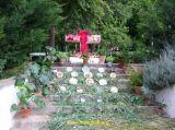 Cruces de Mayo 2006 40