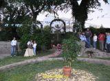Cruces de Mayo 2006 47