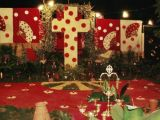 Cruz de Mayo 2005 78