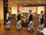 Desfile de Batas Flamencas. Semana de la mujer . 7 de marzo de 2009 8