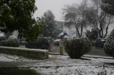 25 de Enero. Otra Gran nevada . Fotos de Emilia Hoyo