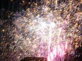 Fiestas de La Malena 2008. Día 22 de julio. Coronación (2) 87