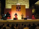 Fiestas de La Malena 2008. Día 23 de julio.Actuaciñon de Mariani Galdón 4