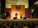 Fiestas de La Malena 2008. Día 23 de julio.Actuaciñon de Mariani Galdón 5