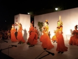 II Festival de la Inmaculada 44