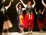Muestra Provincial de Baile 10