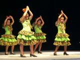 Muestra Provincial de Baile 21