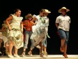 Muestra Provincial de Baile 40