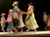 Muestra Provincial de Baile 42