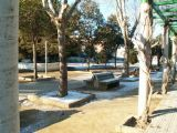 Nieve en Mengíbar 43