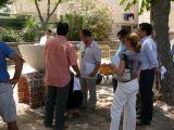 Pórtico de Féria 2006. Concurso de Albañilería 59