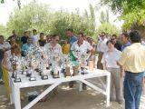 Pórtico de Féria 2006. Concurso de Albañilería 64