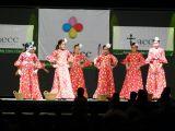 Pórtico de Féria 2006. Gala lucha contra el cancer 14