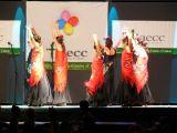 Pórtico de Féria 2006. Gala lucha contra el cancer 68