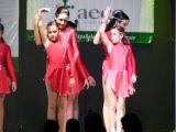 Pórtico de Féria 2006. Gala lucha contra el cancer 6