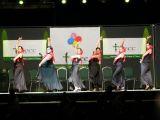 Pórtico de Féria 2006. Gala lucha contra el cancer 76