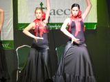 Pórtico de Féria 2006. Gala lucha contra el cancer 81