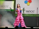 Pórtico de Féria 2006. Gala lucha contra el cancer 85