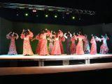 Pórtico de Féria 2006. Muestra de Baile 1