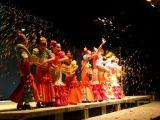 Pórtico de Féria 2006. Muestra de Baile 24