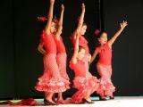 Pórtico de Féria 2006. Muestra de Baile 27