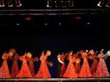 Pórtico de Féria 2006. Muestra de Baile 39