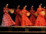 Pórtico de Féria 2006. Muestra de Baile 40