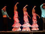 Pórtico de Féria 2006. Muestra de Baile 60