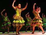 Pórtico de Féria 2006. Muestra de Baile 6