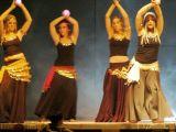 Pórtico de Féria 2006. Muestra de Baile 88